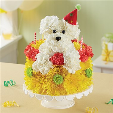 1 800 FlowersR Birthday Wishes Flower CakeTM PupcakeTM