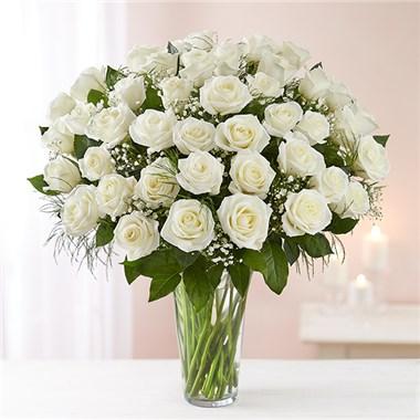 1 800 flowers ultimate elegance long stem white roses miss 1 800 flowers ultimate elegance long stem white roses mightylinksfo